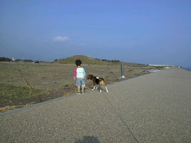 富士シンボル緑地(<br />  仮称)へ散歩